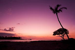 コハラコーストの夕暮れの写真素材 [FYI02652841]