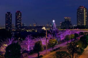 桜イルミネーションのお台場の夜景の写真素材 [FYI02652926]