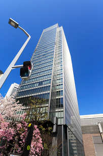 青空とビルと桜の写真素材 [FYI02652941]