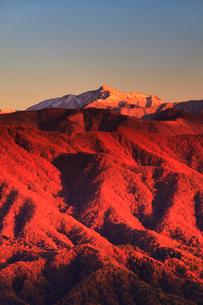 陣場形山から望む塩見岳のモルゲンロートと紅葉の夕景の写真素材 [FYI02652972]