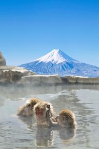温泉猿と富士山の写真素材 [FYI02652981]