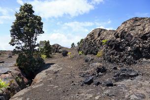 ハワイ島 キラウエア火山の割れ目噴火口とスパターランパートの写真素材 [FYI02653073]