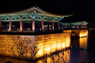 東宮と月池の写真素材 [FYI02653089]