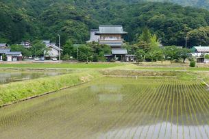 西福寺の写真素材 [FYI02653250]