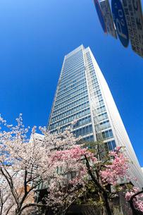 青空とビルと桜の写真素材 [FYI02653459]