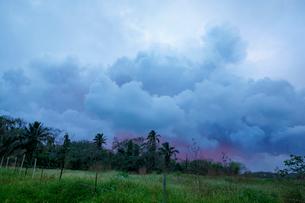 ハワイ島のレイラニ・エステイトの噴火口から立ち昇る噴煙の写真素材 [FYI02653466]