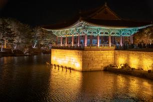 東宮と月池の写真素材 [FYI02653491]