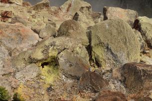 ハワイ島 キラウエア火山のサルファーバンクスの写真素材 [FYI02653492]
