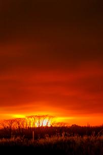 ハワイ島レイラニ地区の噴火口の火映をマウンテンビューから望むの写真素材 [FYI02653504]