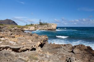 カウアイ島のマハウレプの海岸線の写真素材 [FYI02653600]