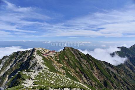 唐松岳頂上山荘と五竜岳に続く尾根の写真素材 [FYI02653686]