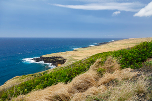 ハワイ島ナアレフのシーニックポイントの写真素材 [FYI02653692]