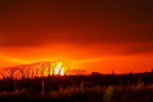 ハワイ島レイラニ地区の噴火口の火映をマウンテンビューから望むの写真素材 [FYI02653732]