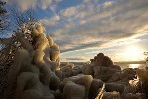 夕日と猪苗代湖の湖畔の凍りついた草木の写真素材 [FYI02653753]