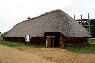 三内丸山遺跡の大型竪穴式住居跡の写真素材 [FYI02653756]