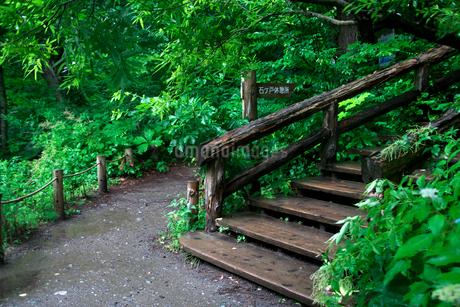 奥入瀬渓流の石ヶ戸休憩所の写真素材 [FYI02653769]