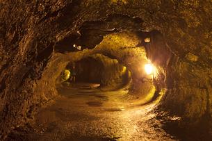 ハワイ島 キラウエア火山のサーストン溶岩トンネルの写真素材 [FYI02653785]