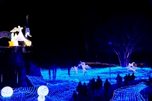 るり渓温泉,京都イルミエ-ル,天空の森の写真素材 [FYI02653789]
