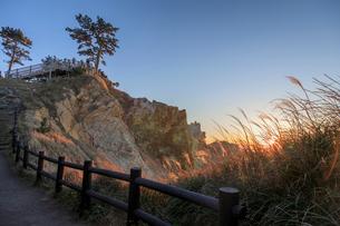 黄金崎公園の遊歩道から展望デッキを望むの写真素材 [FYI02653813]