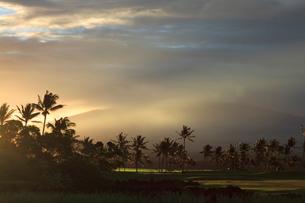 ハワイ島 マウナラニリゾートからマウナケアを望むの写真素材 [FYI02653820]