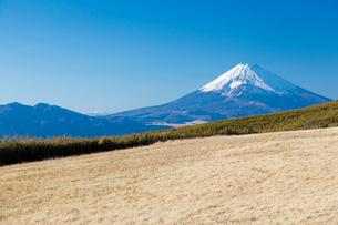 十国峠から望む富士山の写真素材 [FYI02653823]