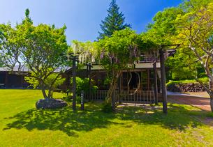 堀辰雄文学記念館にある旧宅と藤棚の写真素材 [FYI02653925]