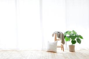 窓とカーテンとスツールと観葉植物の写真素材 [FYI02653935]