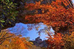 紅葉に映える妙義山の第四石門から大砲岩を望むの写真素材 [FYI02654027]