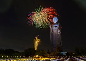 牛久大仏万燈会と花火の写真素材 [FYI02654054]