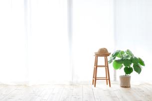 窓とカーテンとスツールと観葉植物の写真素材 [FYI02654058]