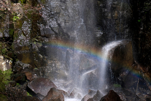 駒ヶ滝と虹の写真素材 [FYI02654148]