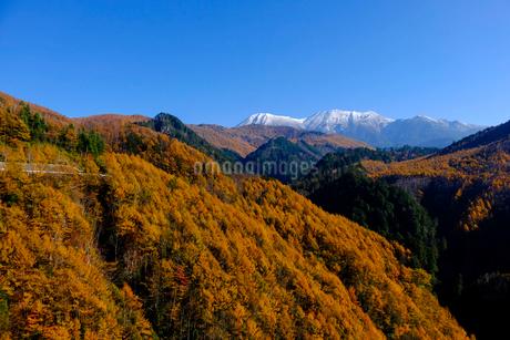 紅葉の御嶽山の写真素材 [FYI02654178]