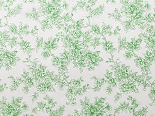 緑のボタニカル柄の布の写真素材 [FYI02654191]
