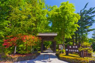 新緑の堀辰雄文学記念館入口の写真素材 [FYI02654198]