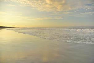 朝の海岸と波の写真素材 [FYI02654998]