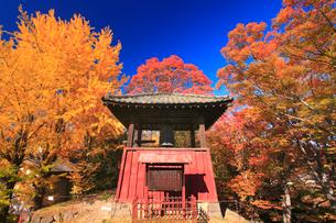 上田城の平和の鐘と紅葉の写真素材 [FYI02655064]
