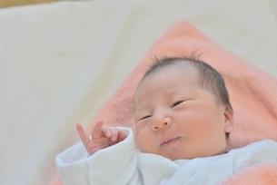赤ちゃんの写真素材 [FYI02655265]