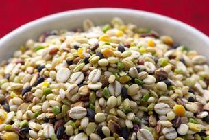十六雑穀米の写真素材 [FYI02655267]