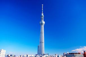 東京スカイツリーの写真素材 [FYI02655276]