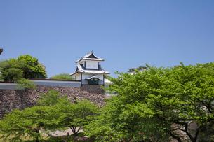 新緑と金沢城公園の写真素材 [FYI02655299]