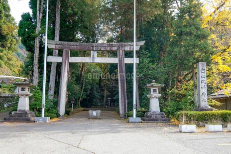 白山比咩神社一の鳥居の写真素材 [FYI02655303]