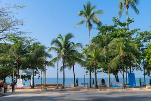 アオナンビーチの写真素材 [FYI02655524]