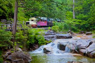 赤沢自然休養林を走る森林鉄道のトロッコと道川の写真素材 [FYI02655582]