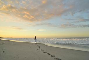 夜明けの海岸に立つ女性の写真素材 [FYI02655659]