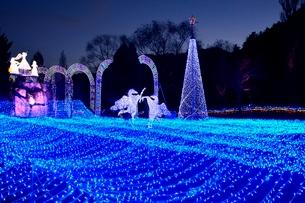 るり渓温泉,京都イルミエ-ル,天空の森の写真素材 [FYI02655671]