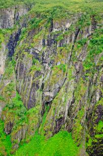岩と緑の写真素材 [FYI02655857]