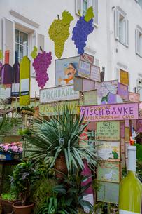 裏通りの植木屋と看板装飾の写真素材 [FYI02655944]