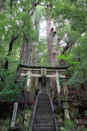 熊野参詣道中辺路の継桜王子跡の写真素材 [FYI02656052]