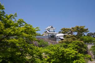 新緑と金沢城公園の写真素材 [FYI02656096]