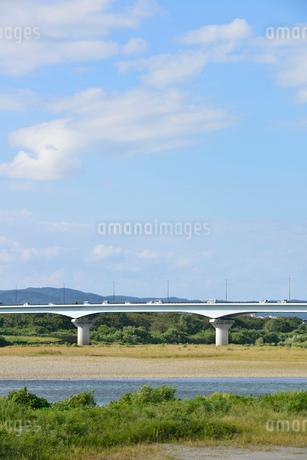 フェニックス大橋と信濃川の写真素材 [FYI02656127]